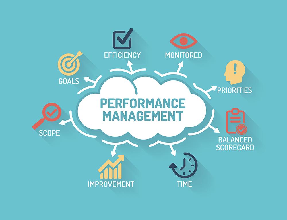 performance-management-deltek-vision